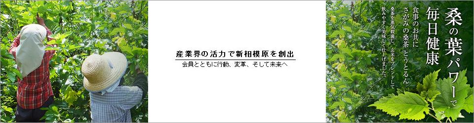 mainvisual_02-03